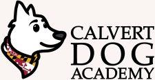 Calvert-Dog-Academy- Header 2 beige